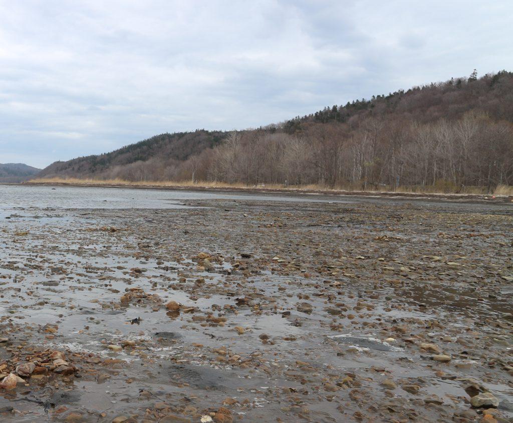 潮干狩りのできる能取湖の写真