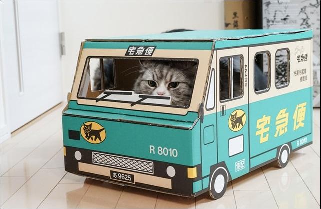 転勤命令を断固拒否する猫の図