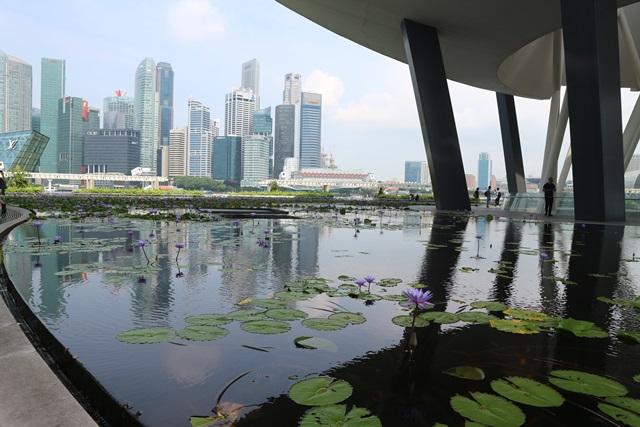 シンガポールでの外出時にはWIFIは必要、必須である